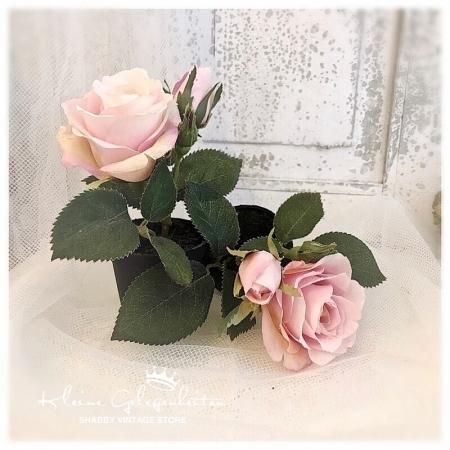 Rose Rosa Topfblume Kunstblume