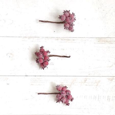 Beeren Pick Hagebutte in Rot