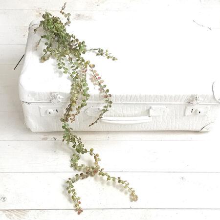 Kunstblume Ranke mit Blätter Grün-Braun
