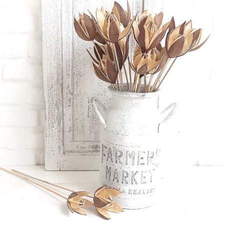 getrocknete Wildlilie Braun Beige