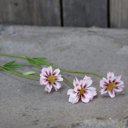 Chic Antique Fleur Gräben Kante Rosa